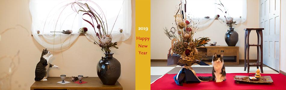 top 2019 happy new year